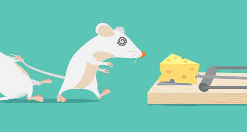 A mouse pulls another mouse away from a mousetrap